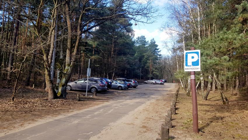 Nowy rodzaj biznesu, wypo¿yczanie lasu na spacery