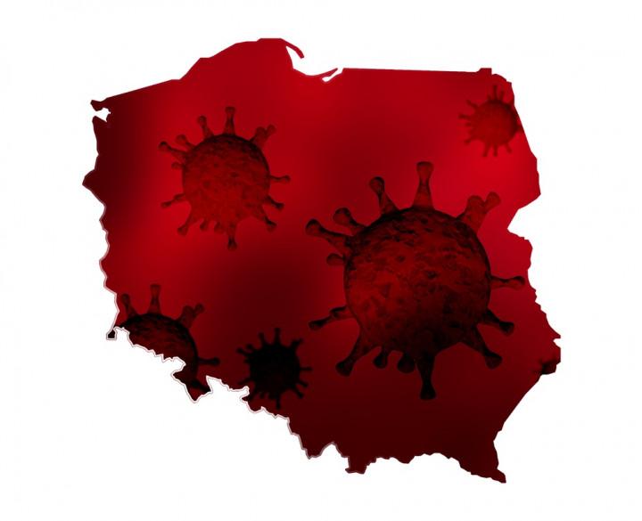 Koronawirus, Polska, pó¼ny ranek 24 lipca