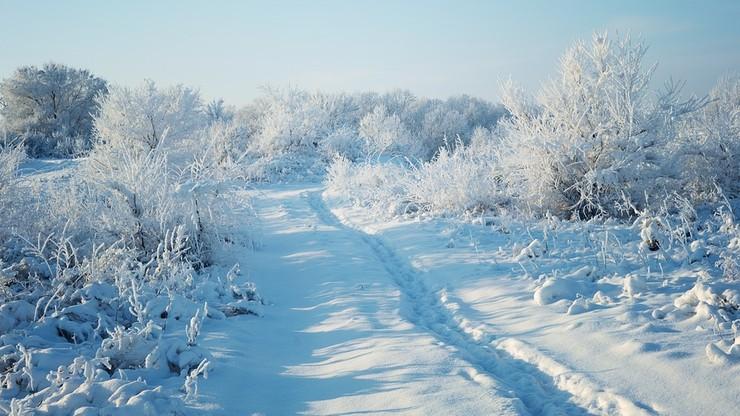 Synoptycy zapowiadaj± niedalek± zimê