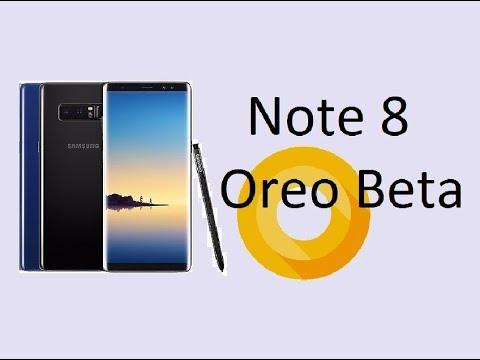 Beta Androida 8.0 Oreo lada chwila dostêpna w Polsce, Niemczech i Francji