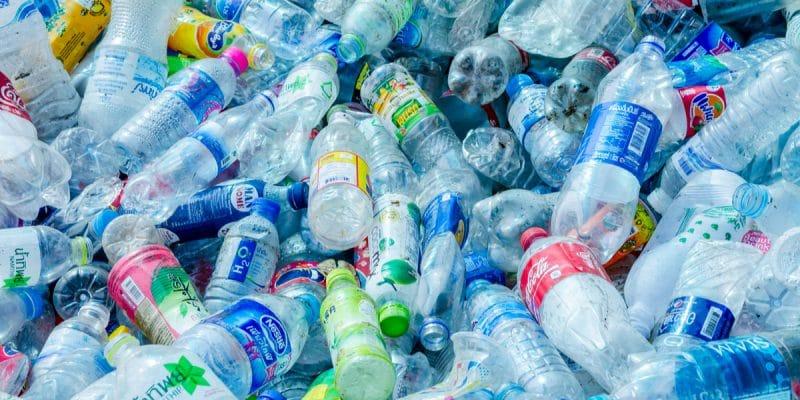 Naukowcy usprawnili proces biodegradacji plastiku